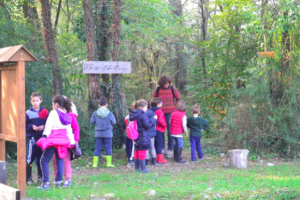 laboratori nel bosco per bambini